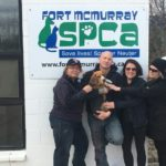 Lennon returned safely to FMSPCA