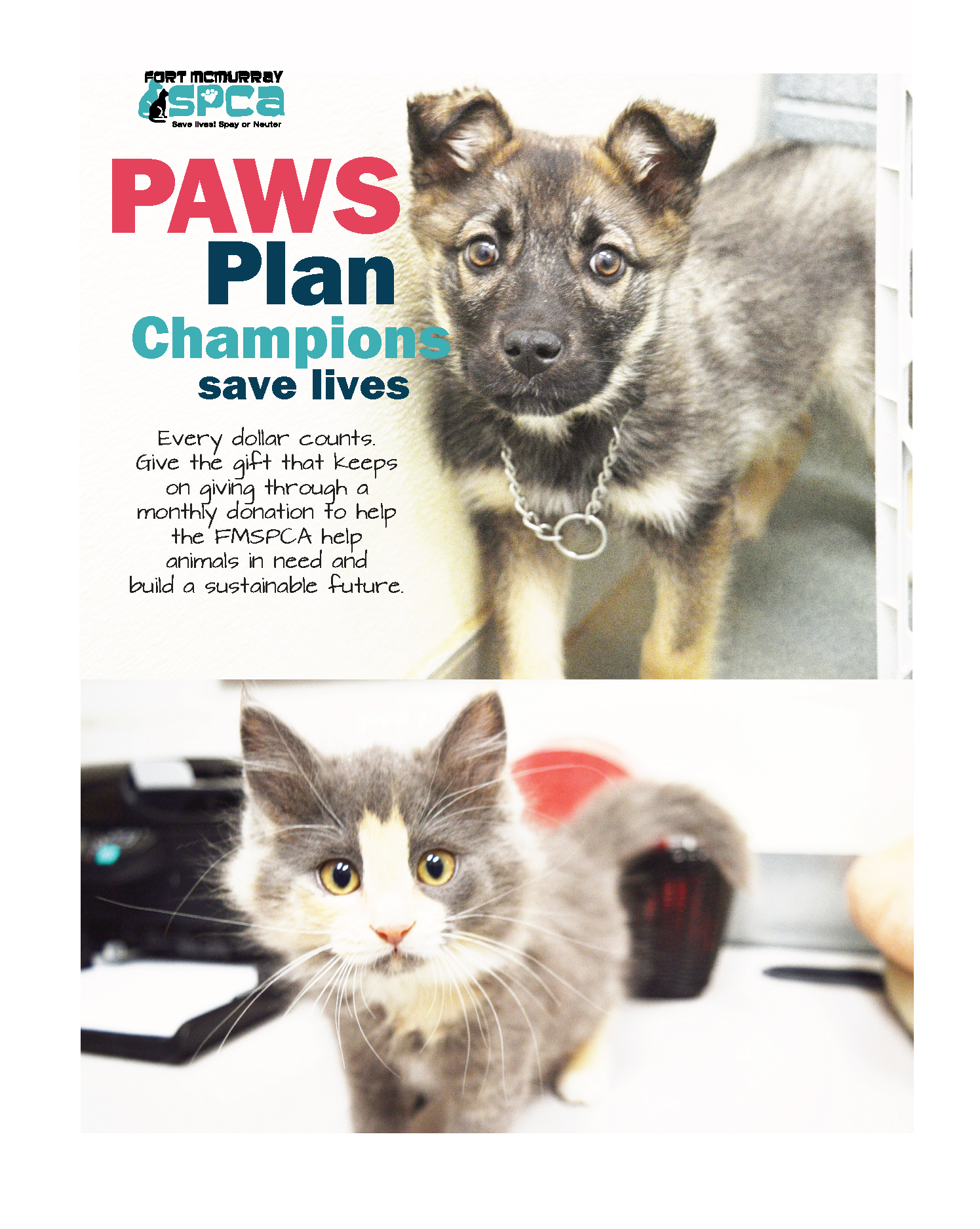 Giving Catalogue | Fort McMurray SPCA